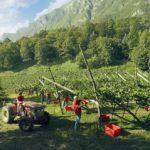 """Grape Harvest Aperitif"" at the Ferrari Winery"