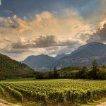 """Ferrari è nuovamente """"Sparkling Wine Producer of the Year"""" per The Champagne & Sparkling Wine World Championships 2019"""